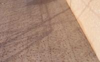 Укладка тротуарной плитки на отмостку и цоколь дома