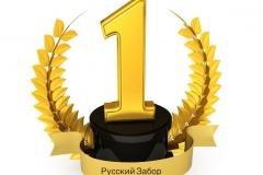 первое место в ТОП 10 лучших фирм по установке заборов в Москве в 2020 году
